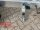 Eduard 2700 KG Heckkipper - Gebremste Doppelachser - 3.1x1.8m - Ladehöhe:63 cm - 195/50R13 - E-Pumpe - Auffahrrampen - Stützen - Bordwände 30cm - Hochplane SP-Line